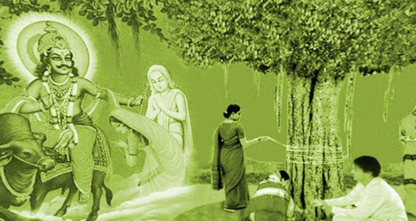 Vat Savitri 2020 वटसावित्री-व्रत (वटसावित्री व्रत – अमावस्यांत पक्ष : 20 मई