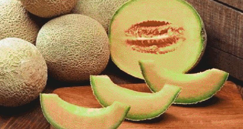 खरबूजा गर्मियों में सेवन से स्वास्थ्य लाभ